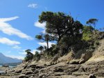 Marlborough Sounds v.jpg